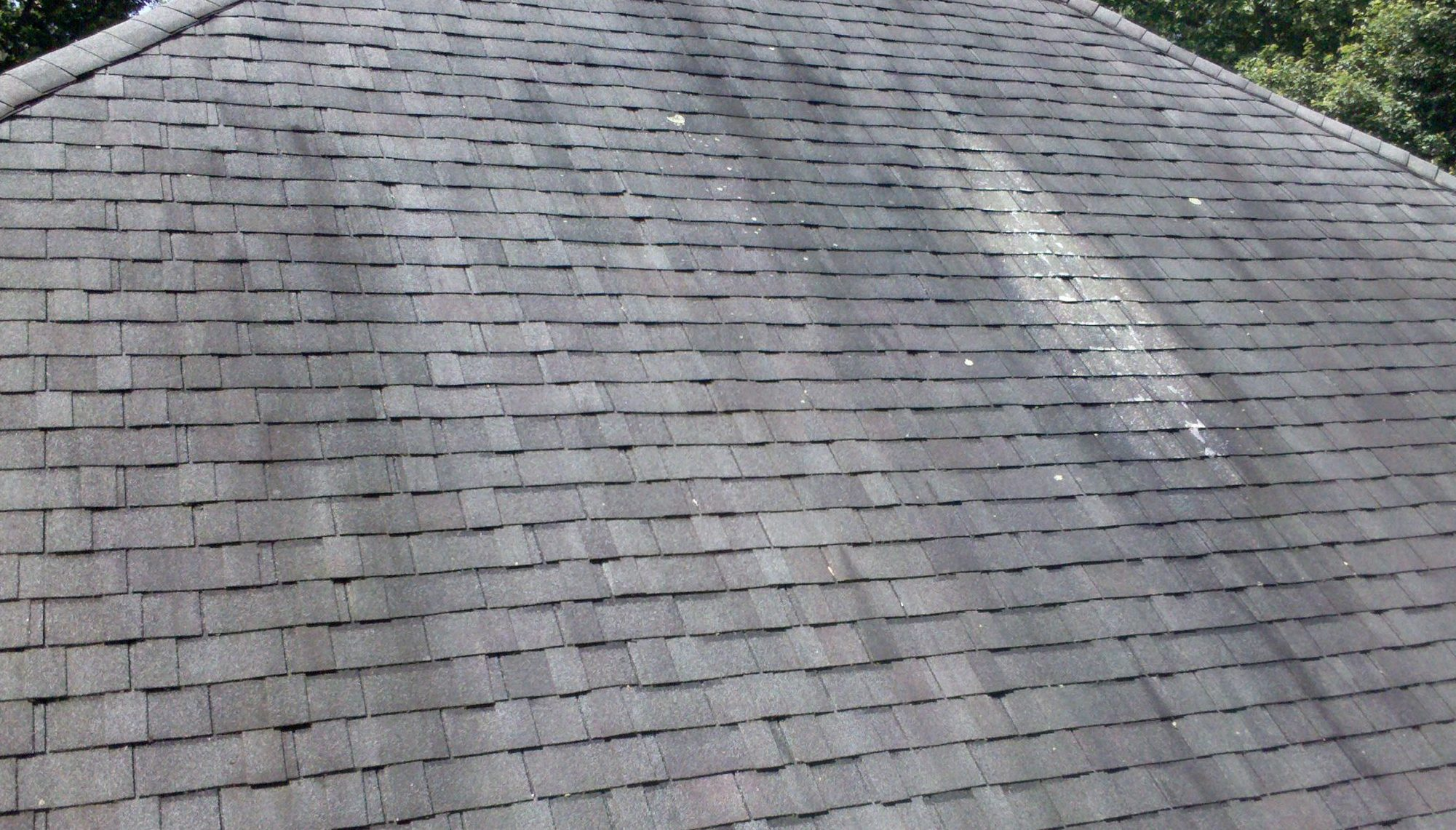 gray roof stained with algae