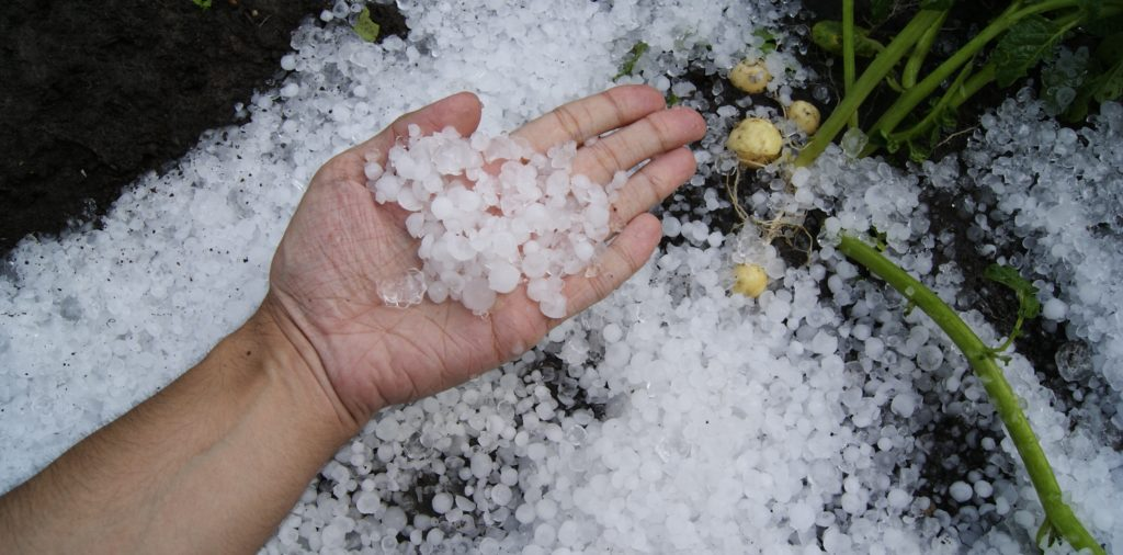 hand holding pieces of hail with hail on the floor in the back