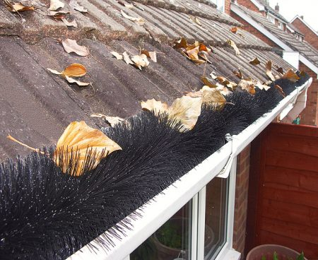 Leaves on top of brush gutter guards